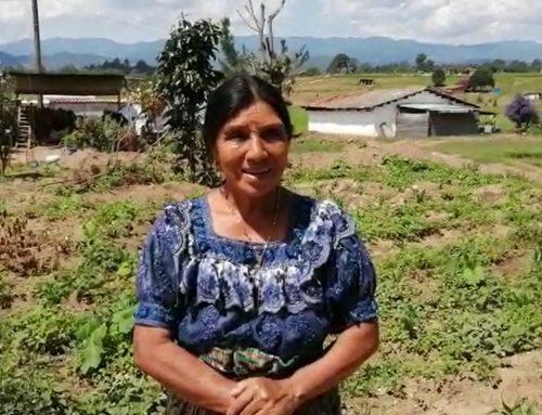 Doña Dolores: Un huerto nos ayuda a tener alimentos, principalmente en esta época de la enfermedad